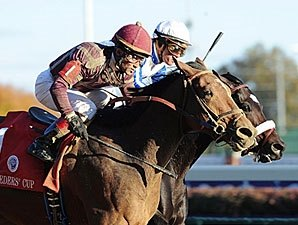 Breeders' Cup Winner Dakota Phone Retired