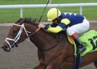 Roxy Gap Favored for Gulfstream Park Opener