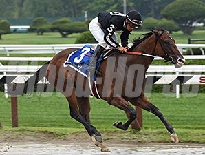 R Free Roll wins the Honorable Miss Handicap July 28, 2014.