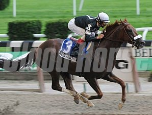 Commentator wins the 2009 Kashatreya Stakes.