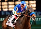 Baffert Nixes Big 'Cap for Dubai-Bound 'Dude