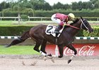 Big Drama Wins Stakes Tuneup at Calder