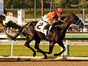 San Vicente: Shakin It Up Clears First Hurdle