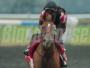 Kaigun - Woodbine Race Course, 09/05/2014