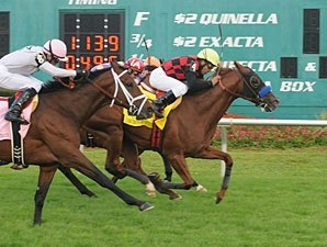 Swift Warrior Hits Target in Tampa Bay Stakes