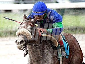 Angelica Zapata win the 2012 Sara's Success Stakes.