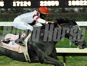 Unrivaled Belle wins the 2010 Breeders' Cup Ladies Classic.
