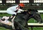 BC Winner Unrivaled Belle Retired