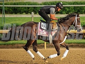 Broadway's Alibi - Churchill Downs May 3, 2012..