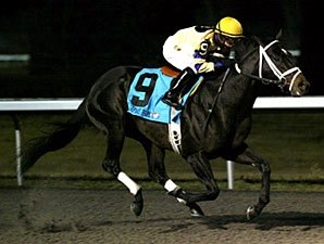 Mr. Prankster Gets First Stakes Win in Prevue