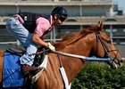 Judge Denies Motion to Sell Curlin
