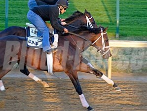 Uncle Mo and Stay Thirsty working together at Churchill Downs.