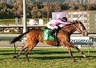 Lexie Lou Shows Old Spark in Autumn Miss Win