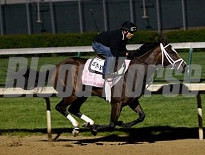 Dreaming of Julia works at Churchill Downs before the Kentucky Oaks.
