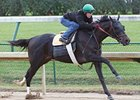 Take Charge Indy Has Bullet Work at Churchill