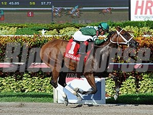 Coco's Wildcat wins the 2014 Cassidy Stakes.