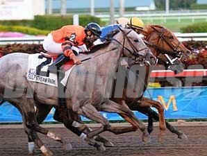 Gemswick Park (center) wins a three-way photo in the Old Hat at Gulfstream Park