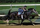 Flat Out's Workout Pleases Trainer Dickey