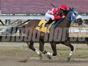 Movin' Out wins the 2011 Bensalem Stakes.