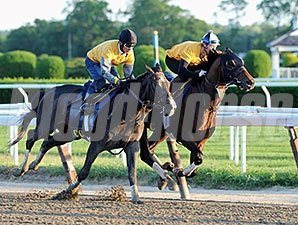 Tonalist - Belmont Park, May 31, 2014