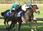 Gayego Answers Dirt Question at Oaklawn