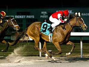 Harlan's Ruby Returns a Winner in Valdale