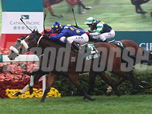 J J The Jet Plane wins the Hong Kong Sprint.