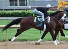 'General' and 'Private' in Preakness Works