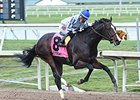 Violette Undecided on Travers for Upstart