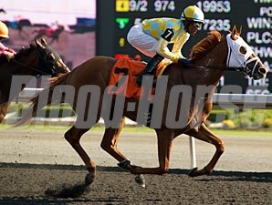 Stealcase wins the 2012 Ontario Derby.