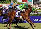 Desert Code Cracks First BC Turf Sprint