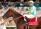 American Pharoah Returning to Action in March