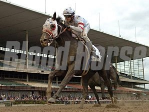 I Want Revenge wins the 2009 Wood Memorial.