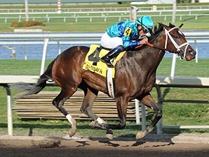 Live Lively Puts in Gulfstream Oaks Breeze