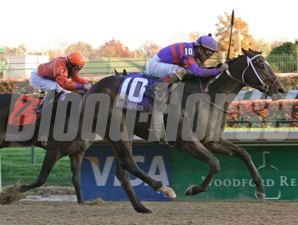 Thiskyhasnolimit wins the 2009 Iroquois.