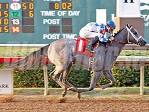 Canigotoo Maiden Win, 06/16/11