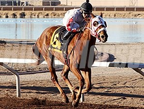 High Test Gal wins the 2014 La Senora Stakes.