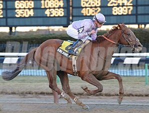 Awesome Act wins the 2010 Gotham.