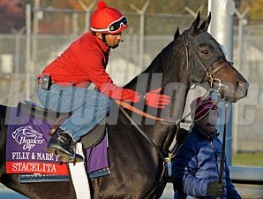 Stacelita, Churchill Downs, Nov 1, 2011.