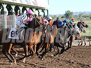 Uncle Dave wins the 2013 Luke Kruytbosch Stakes.