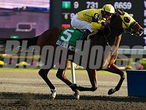 Double McTwist wins the 2012 Bull Page Stakes.