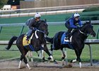 Final Derby Works for Asmussen-Trained Pair