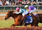 Grade I Winner Bit of Whimsy Retired