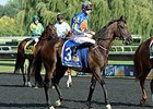 Lameness Knocks Magician Out of BC Turf