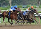 Travers Tie a Golden Ticket to Stud Future
