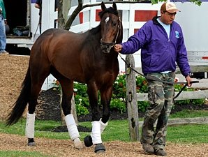 Preakness Notes: May 15