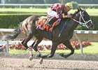 At Least Nine to Run in Preakness