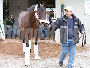 Midnight Interlude leaves for Pimlico on May 18, 2011.