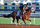 Mr. Z Aims for Breakthrough in Smarty Jones