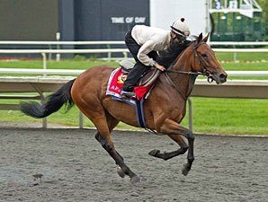 Million Entrant Afsare Works at Arlington